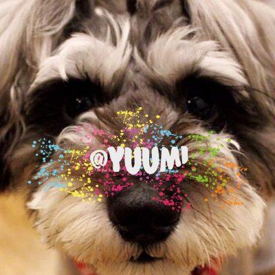 @yuumi